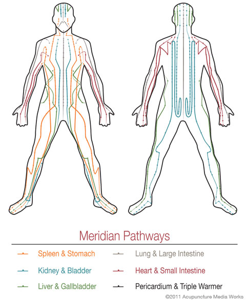 enhanced immunity and organ function from meridian massage Therapy hands sports massage therapy/deep tissue/pain relief text enhance immunity by stimulating lymph flow the body's natural defense and recover from, strenuous workouts improve the condition of the body's largest organ the skin increase joint flexibility lessen depression.